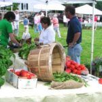 Lyme Farmers Market Open Saturdays for the Season with New Hours