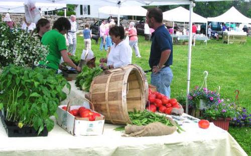 Fresh vegetables galore will be on sale again at Lyme Farmers Market on June 4.