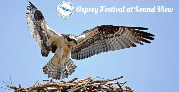 Osprey_Festival_logo_cropped