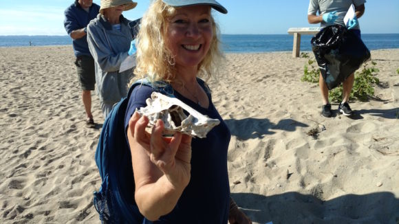 Kendall Perkins displays a skull she found during Save The Sound's Coastal Clean-up Day held yesterday at White Sand Beach.