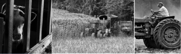 OL Historical Society Presents 'Down on the Farm' Lecture